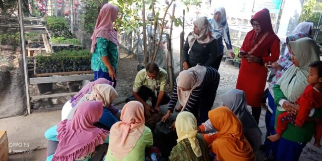 Bimbingan Teknis Agribisnis Cabai Hias Dan Konsumsi Untuk Kelompok Wanita Tani